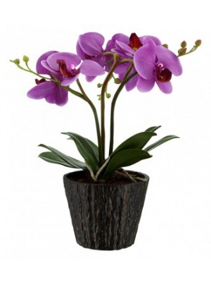 Globo, Flowerpower, Orchid virágcserép akril,lila 7xLED 0,06W 4.5V, elemmel együtt,1,5V, D:250, H:370, inkl. , 28003