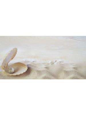 Dekorcsempe, Beryoza, Fresia Seashell 5 Beige 25*50 cm I.o.