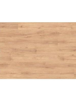 Classen Basic, Tölgy Neutral laminált padló, 6 mm