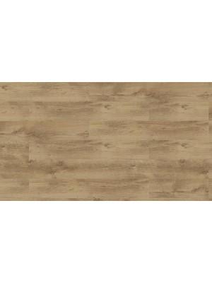 Classen Optimal, Tölgy Sessile laminált padló, 8 mm OOP