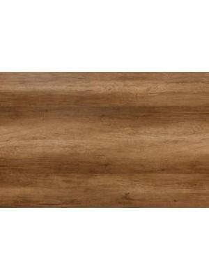 Classen Premium, Tölgy Doncaster laminált padló, 8 mm OOPR
