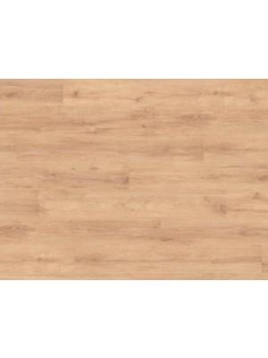 Classen, Neutral Eiche Brett laminált padló, 6 mm