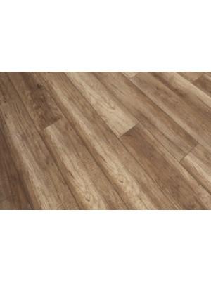 Classen, Adventure 4V Oak Doncaster laminált padló, 8 mm