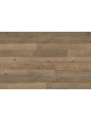 Egger Megafloor, Brown Murten Oak laminált padló, 8 mm