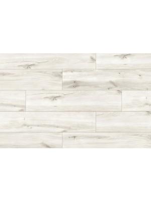 Classen Premium, Forte Aurora Oak laminált padló, 8 mm
