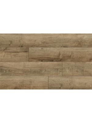 Classen, Trend, Premium, 4V Vanda Oak 52605 laminált padló, 8 mm